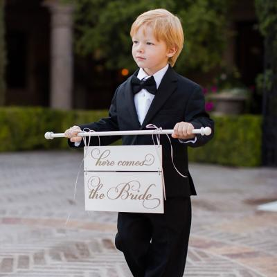 Dapper Young Ring Bearer