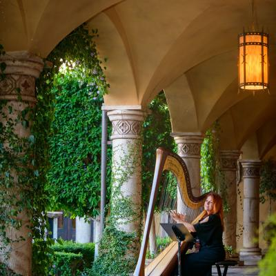 Live Wedding Music Harpist
